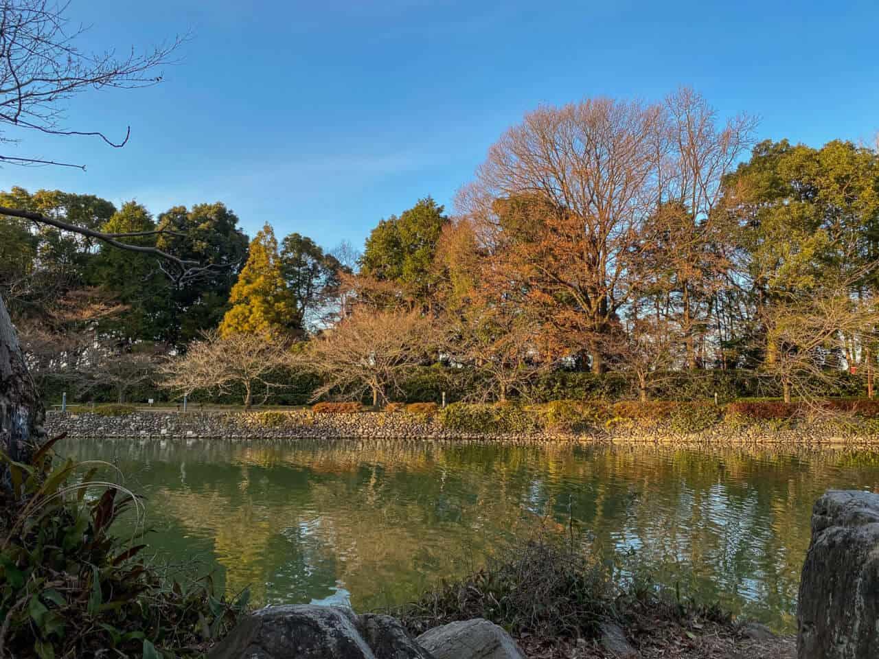 iPhone11 Pro写真